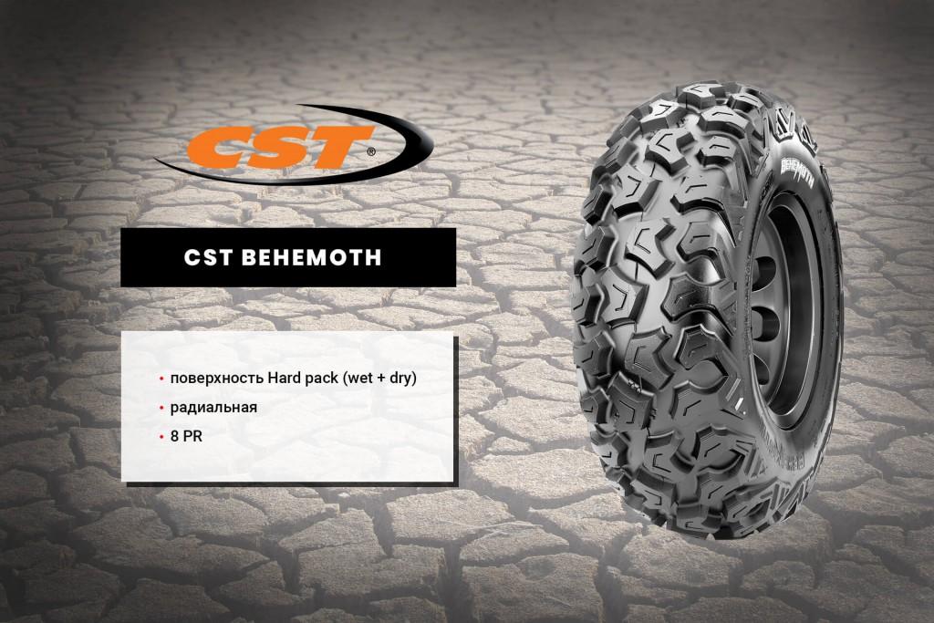 cst-behemoth